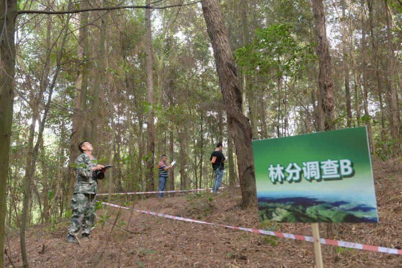 全国林草行业技能竞赛广西选拔赛在南宁举办