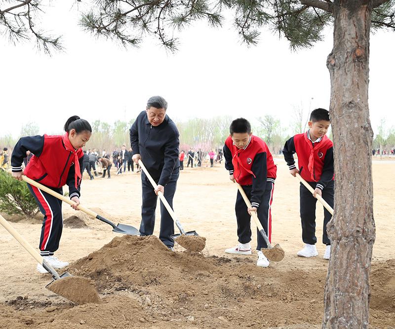 习近平在参加首都义务植树活动时强调:倡导人人爱绿植绿护绿的文明风尚 共同建设人与自然和谐共生的美丽家园