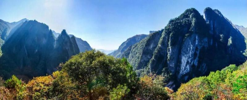 """重庆五里坡纳入""""湖北神农架""""世界自然遗产"""