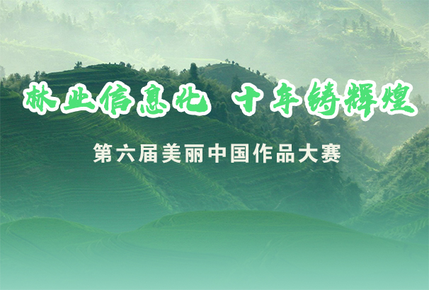 """""""大奖娱乐信息化 十年铸辉煌""""——第六届美丽中国作品大赛"""