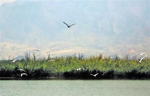 左权龙泉山风景区图片