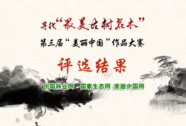 第三屆美麗中國大賽評選結果揭曉