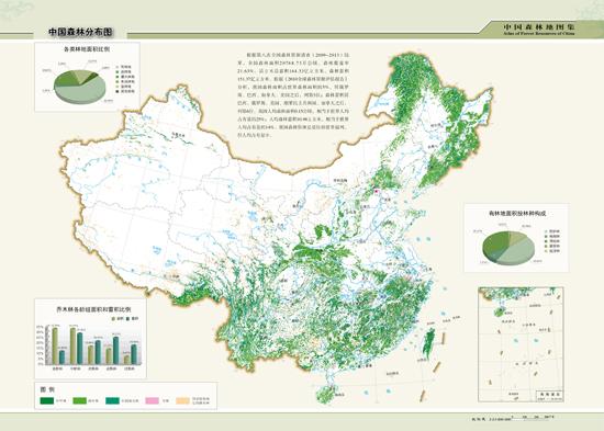 森林资源清查成果图图片