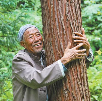退休三十三年 种树二十万株