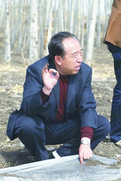 王树清在林地调研.资料图片