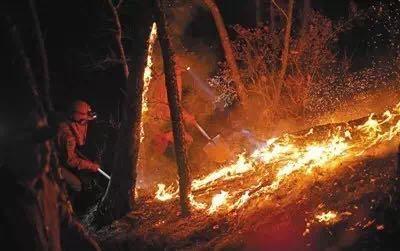 武警内蒙古大兴安岭森林支队官兵清理北线火场一处火