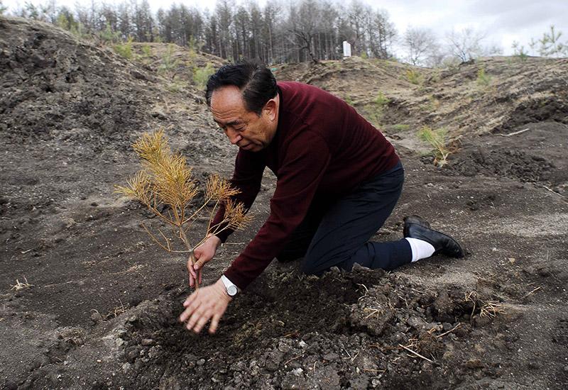 2006年5月1日,在黑龙江省齐齐哈尔市拜泉县,王树清在检查小树苗.