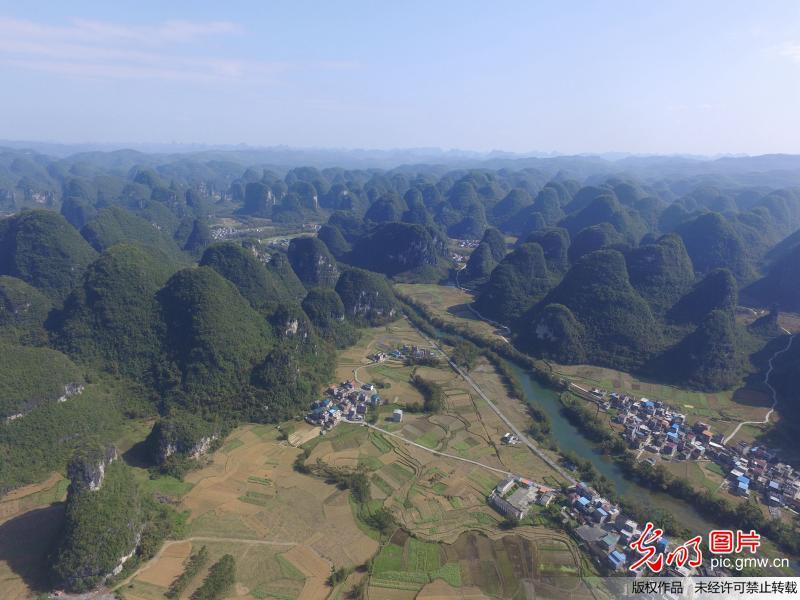 广西罗城:治理石漠化 石山披绿装