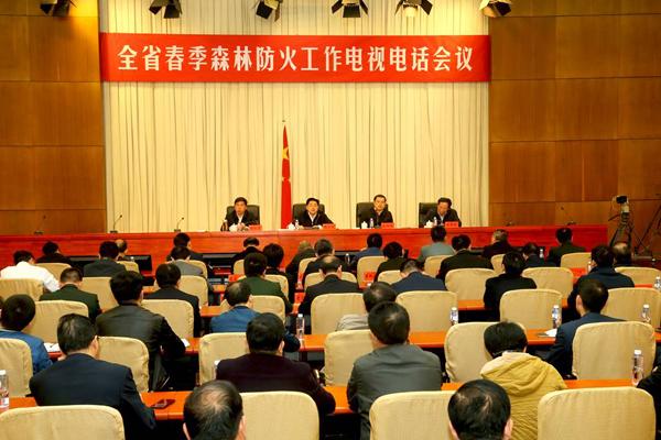 湖南省召开全省春季森林防火工作电视电话会议