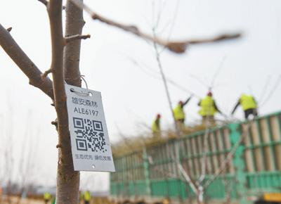 這座新城 自帶綠色基因|政策資訊-陜西省天行健生物工程股份有限公司