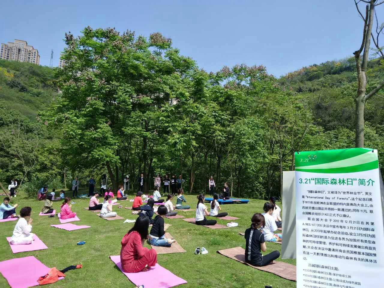 """重庆照母山公园举办""""森林瑜珈""""主题活动_综合信息_中国森林公园网"""